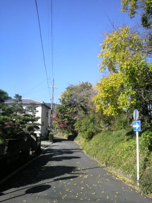 2010112110050001
